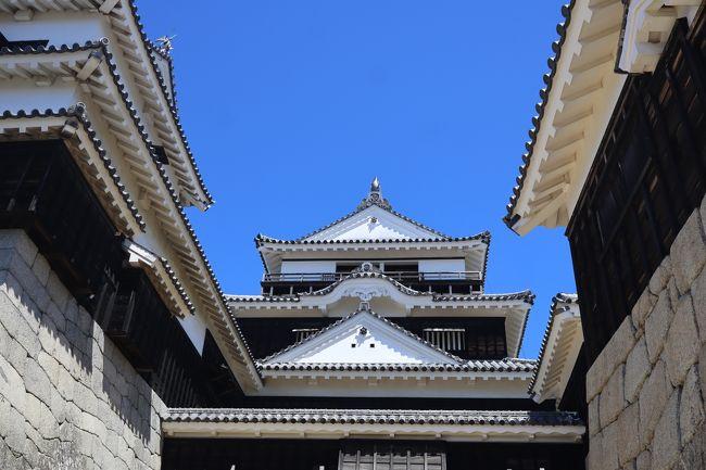 2020年8月16日(日)、7時30分JALで羽田から松山へ。飛行機から見える晴れ渡った景色は今どこを飛んでいるのか手に取るように分かり、いつもであれば寝ていますが、子供の様に写真をパシャリ・パシャリと撮りました。<br /><br />到着後は4トラのQ&amp;Aでベテランのトラベラーの方々にアドバイスを戴いた「松山うどん」をハシゴ、その後、松山城の昇り降りで足がカクンカクンとなりながらも、昼過ぎに今回待望の「宇和島鯛めし」を食べに行きました。