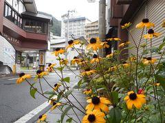 宮城県、鳴子温泉へ乗り鉄紀行--前篇--