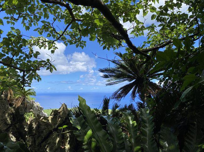 ドライブするから那覇はなし!やっと来た沖縄!絶景の辺戸岬まで。