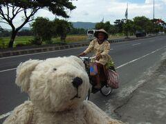 初めてのブロモ(ベトナム・カンボジア・マレーシア・シンガポール・インドネシア 16日間の旅 その12-1)ジョクジャカルタからブロモへ移動!