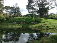 NZ北島!ホビット村とロトルア温泉