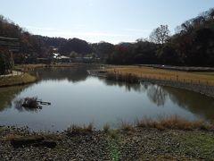 鎌倉の鶴亀