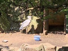 伊豆シャボテン動物公園を満喫する旅2
