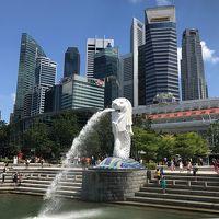 弾丸シンガポール2019.5 part 2 食事・観光