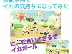 4歳母子旅~嵐でどーなる??Go Toと函館グルメクーポン配布でおトクすぎる函館旅~