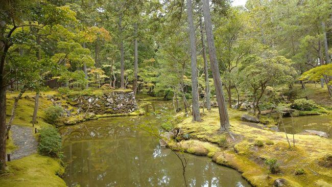 京都の主だった寺社仏閣で午前中にだけいただける朝御朱印が始まりました。苔寺や鈴虫寺、京都迎賓館にも行きました。