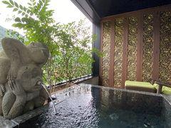 【箱根旅行】雨の箱根観光/箱根藍瑠に1泊
