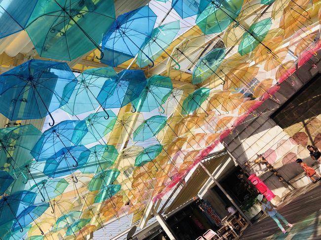 2020年(本来であれば東京五輪)コロナの夏、暑かったですねえ。<br />酷暑の山陰へ行ってまいりました。<br /><br />コロナのせいで海外に行けなくなり、こうなったら娘47都道府県コンプしてしまおうかという方向に舵を切りました。<br />山陰なんて子どもが楽しめるところあるの?<br />と地味すぎていまいち知られてないエリアかもしれませんが、本数の少ない公共機関をフル活用して行ってまいりました。<br /><br />まずは島根県。<br />私自身は2007年以来2度目で、当時旅行記も書いてないし、記憶も薄れてるしで、気持ちだけはまっさら。<br />観光客に対して積極的に踏み込んでこないのが青森県そっくりで、これは好みが分かれる大きなポイントだと思っています。<br /><br />【旅程】<br />★①羽田8:40発ANA→萩・岩見10:10着<br />  益田→浜田→江津→温泉津<br />★②温泉津→仁万→出雲→松江→鳥取<br /> ③鳥取15:00発ANA→羽田16:15着<br /><br />【費用】母子で総合計57,900円<br />◆飛行機:15,390円<br /> 羽田→萩・石見 特典7500マイル×2名<br /> 鳥取→羽田 1人は特典7500マイル、1人はANAスーパーバリュー15,390円<br />◆現地交通費:9000円<br />◆宿:2泊で13,230円<br /> 温泉津:旅の宿輝雲荘7,700円(楽天トラベルより予約)<br /> 鳥取:5,530円(じゃらんより予約)<br />◆観光:8,780円<br />◆食費:約11,500円