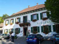 ドイツ(フライブルグ)出張:2日目(Freiburg、Waldkirch)