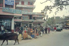 《メモリー》2000年2・3月 ネパールに行ってみた【その3】 ネパール第2の町・ポカラを歩き回る
