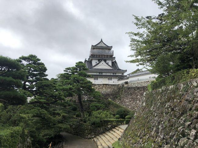 四国旅行の高知編です。<br />高知での目的はもちろん、鰹のたたき~(≧∀≦)&#8252;︎<br />美味しいですよね、カツオ。どうしても食べたくて、正直、このために四国に来たと言っても良いくらい。<br />ついでに高知城にも行ってみました。