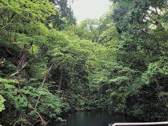2020年夏 帰省しない北海道旅行その1 十和田湖RIBツアーから青函フェリーで函館へ