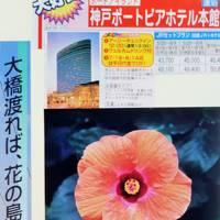 神戸-淡路島 ジャパンフローラ2000=淡路花博=見学 ☆神戸ポートピアホテル/ハーブ園#