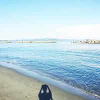1泊2日 徳島旅行 アオアヲナルトリゾート 宿泊情報