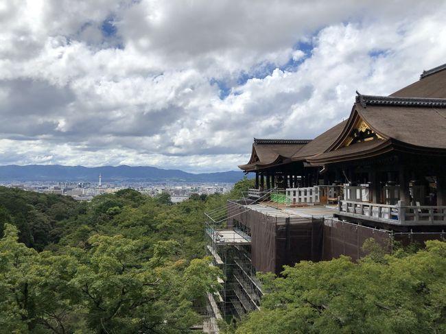 気軽に旅行ができなくなった2020年。。<br /><br />楽しみがなくなってしまったけど、<br /><br />これは…<br /><br />逆にチャンスかも。。<br /><br />ここまで観光客が少ない京都は、<br /><br />なかなかない。。<br /><br />ということで、<br /><br />通常なら、観光客が多すぎて行こうとは思わないところに<br /><br />順に行ってみることにしました。