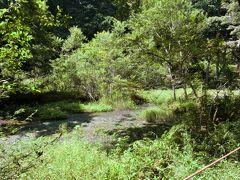 県内旅行で湯河原へ。 その①神奈川県の端っこで酷暑の中のハイキング。