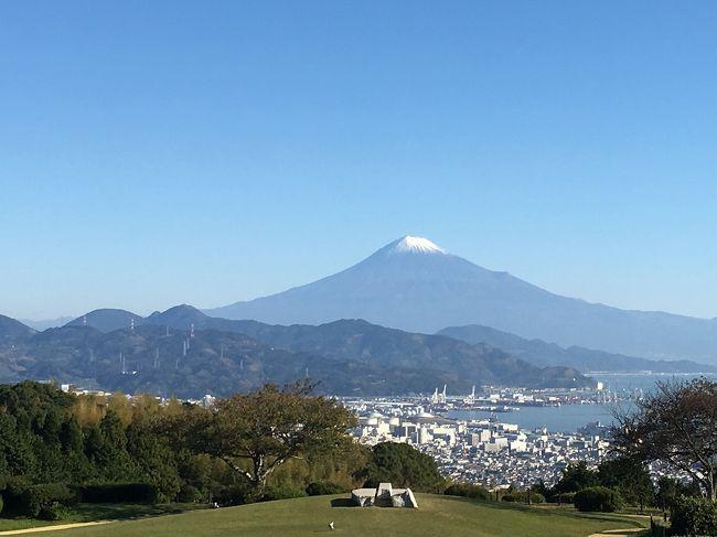 家族4人で静岡旅行。今回は以前から行ってみたかった日本平動物園と登呂遺跡、三保の松原に行きました。<br /><br />宿泊先:日本平ホテル(楽天トラベル・スタンダードダブル)12306円(朝食別)