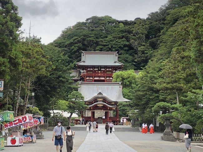ふらり鎌倉①~鶴岡八幡宮