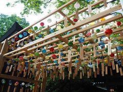 今年は縁結び風鈴が中止になってしまったけど川越氷川神社へ、ちょっとだけ飾られた風鈴は見られました