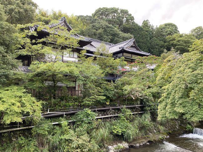 2020年8月下旬に夫婦で湯河原温泉に行ってきました。TOTOCO小田原のとと丸食堂で海鮮丼を食べてから湯河原の温泉旅館「富士屋旅館 湯河原」の洛味荘に宿泊。宿も料理も最高でした。2日目は軽く観光してご当地B級グルメの担々やきそばを食べました。<br /><br />今回宿泊した旅館はGoToトラベルキャンペーンを使い予約しました。湯河原は箱根や熱海、伊豆など近隣の観光地より混雑が少なく穴場でおススメかも。<br /><br />動画はこちらから<br /><br />https://youtu.be/EDz7g7aK2rQ