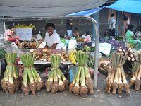 2012年 南太平洋の独立国-F(フィジー編) /陸路でスバからナンディへ