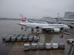 福岡空港国内線ターミナル絶賛リニューアル中 Part20(完結編)