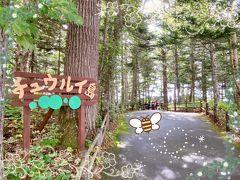 2泊3日釧路旅行④~チュウルイ島のマリモとワカサギ天丼~