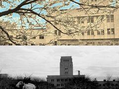 シリーズ昭和の記録No.21 大学構内の四季 Four seasons of college in Ookayama  campus
