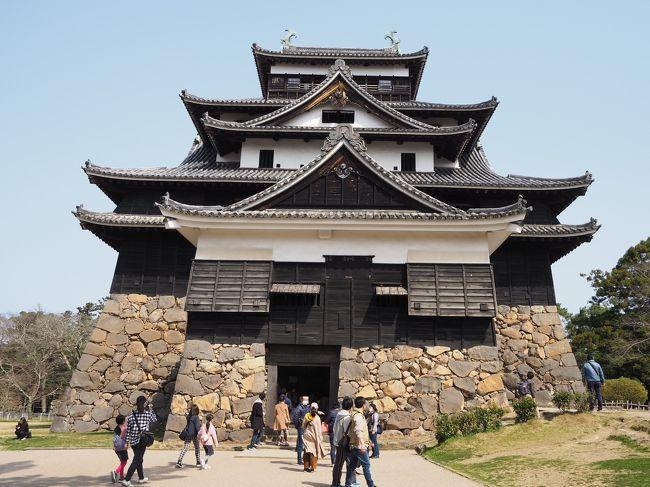 2020年3月弥生の三連休。例の渦中になりかけてた時期であったものの、予約キャンセルし損切できずに、行ってしまった鳥取~島根東部への2泊3日の旅。<br /><br />最後は、島根県の県庁所在地「松江」に一泊し、そのまま国宝天守5城の1つであり、かつ現存天守12城の1つでもある名城松江城を訪れます。<br />この松江城を持って、前に挙げた国宝5城、現存天守12城を全て訪れた事となり、とうとう俺もここまで来たか(どこ?)と感慨深いものがあります。<br /><br />城訪れた後はとりあえず観光スポットと言われるような所をサクッと周り、最後は一畑鉄道に乗ってどこか行ってみようという事で、後から考えれば終点の出雲大社まで行ってもよかったのですが、「フォーゲル」という単語に妙に惹かれてしまい、松江フォーゲルパークを訪れる事に。<br />ここが案外面白かったので、旅行記大分長くなってしまいましたが、最後までお付き合い頂ければ嬉しいです。<br /><br />ちなみにフォーゲル(Vogel)はドイツ語で「鳥」の意味です。<br /><br />-----------------------------------------------------------------<br />2020年弥生 唯一の未踏県鳥取と島根東部にこっそりお出かけ<br />①初鳥取ですが行くのはいつもと変わらず城と当然砂<br />https://4travel.jp/travelogue/11640760<br /><br />②米子に泊まり、翌日は県を跨いで安来にて城&芸術&庭園を愛でる<br />https://4travel.jp/travelogue/11643702