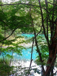 色彩の魔術?五色沼の魅力にハマるーーー。