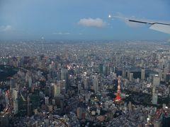 JALどこかにマイルで日帰り那覇にまいる☆スカイツリー・東京タワー 都心上空な着陸
