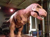 2016年 イギリス周遊 (14 days) =DAY 12= ~恐竜の世界を満喫する午後~