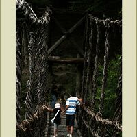 Solitary Journey[628]拘束道路(高速道路)酷道(国道)険道(県道)を走破<四国剣山の麓、奥祖谷二重かずら橋>徳島県三好市