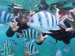 2020沖縄でお魚に癒される その6 青の洞窟