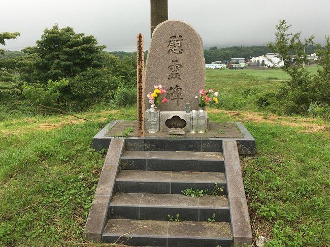 1995年3月の地下鉄サリン事件や1994年6月の松本サリン事件を引き起こしたオウム真理教の拠点があった、旧上九一色村(現在の富士河口湖町)を訪れてみました。<br />1995年という年は非常に激動的な年でした。1月には阪神淡路大震災が起こり、その後3月に地下鉄サリン事件、警察庁長官狙撃事件。4月に警察庁長官狙撃事件、村井秀夫刺殺事件、5月に上九一色村の教団施設を一斉捜査と、連日大地震とオウム真理教のニュースで溢れていました。<br />自分自身も地下鉄日比谷線にサリンが撒かれた列車の次に乗り、茅場町駅ホームで痙攣して倒れている女性と、必死に介護する駅員を目撃してしまいました。その時は何が起きているのか想像もできませんでしたが。<br />夏前までは仕事で地下鉄の乗るのが怖くて、多少距離があっても歩いたり、状況によっては都バスに乗ったりしていました。