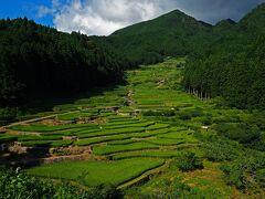 緑きらめく夏を求めて in 奥三河★2020 01 1-2日目【新城】