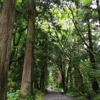 2020夏の長野 その1は善光寺と戸隠神社