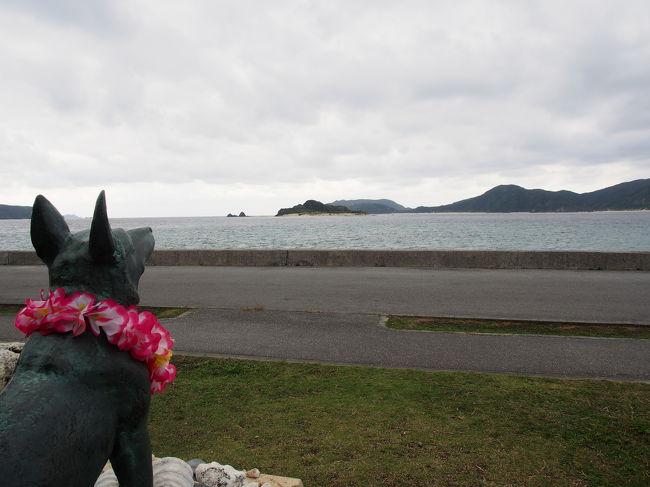 座間味・阿嘉島を巡る旅