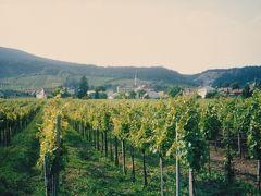 1992年のオーストリア―ワイン産地等ー