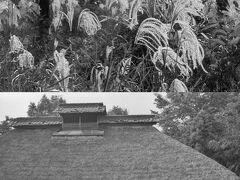 シリーズ昭和の記録No.31 川越の風景・実家周辺 My home town Kawagoe
