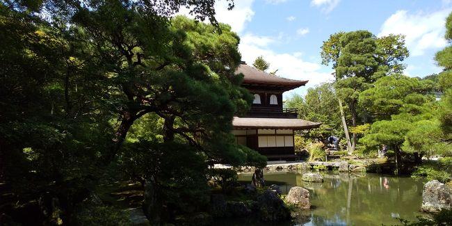 9月の4連休にどこにも行く予定を立てなかったので、そうだ京都へ行こう!と相方のノリエッティと。<br />糖尿病のノリエッティを歩かせるべく、散歩しただけの京都日帰り。<br />写真もほぼないけど、自分の覚え書きに。