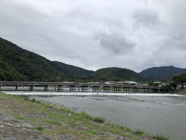 気軽に旅行ができなくなった2020年。。<br /><br />楽しみがなくなってしまったけど、<br /><br />これは…<br /><br />逆にチャンスかも。。<br /><br />ここまで観光客が少ない京都は、<br /><br />なかなかない。。<br /><br />ということで、<br /><br />通常なら、観光客が多すぎて行こうとは思わないところに<br /><br />順に行ってみることにしました。<br /><br />第4弾。