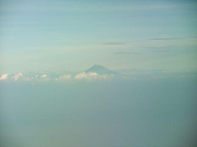 <今回> 世界一周ラストフライト☆ シドニー空港から日本帰国へ