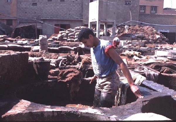 2002年 マグレブ諸国・イタリア北中部都市国家-A(モロッコ編)/カサブランカ・マラケシュ