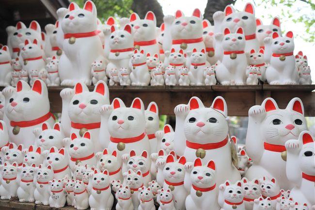 東急世田谷線の宮の坂駅近くにある豪徳寺は招き猫発祥の地として有名です。井伊直弼をはじめとした彦根藩井伊家の菩提寺でもあります。福を招きたい方、猫好きな方は是非一度訪問されてみてはいかがでしょうか。きっと招き猫まみれになって癒されます。