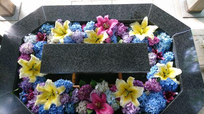 札幌市とその近郊の神社では、新型コロナの影響で祭りなどが中止になりました。残念がる人たちを励まそうと手水鉢に花を生けようという取り組みが初めて行われました。花で受けつくされた手水鉢。全部で9か所ある神社をすべて回ります。最終回はは、北区にある神社を巡ります。