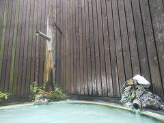 白骨温泉の湯の恵みに感動ーー山水観湯川荘