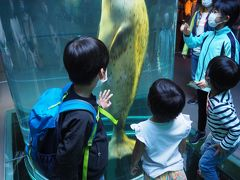 3世代で GoTo 北海道 1日目(旅立ち・旭山動物園)
