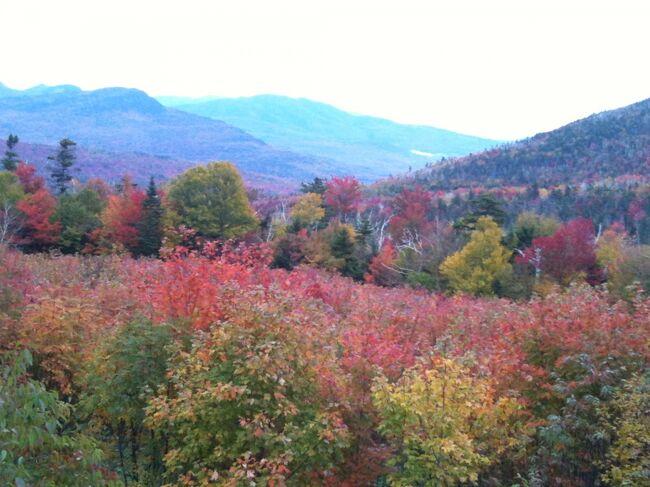 カンカマガス峠の近くにはホワイトマウンテン国有林の谷間を眺望できる展望台があり、紅葉の美しく見渡すことができました。<br />
