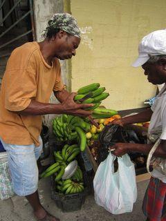 2010年 カリブ海の島国をめぐる-L(ドミニカ国編)